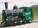 Foto und elektronische Grußkarte von der Dampf-Zahnradbahn zu den Rochers de Naye