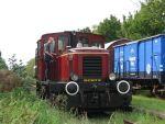 Foto und elektronische Grußkarte vom historischen Zug der Museumseisenbahn Küstenbahn Ostfriesland mit der Diesellok Norden und einem Güterwagen mit Bremserhaus
