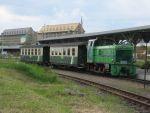 Foto und elektronische Grußkarte von einem Dieselzug der Döllnitzbahn Wilder Robert