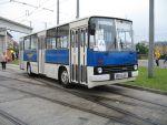 Foto und elektronische Grußkarte vom Omnibus Ikarus 260 im Straßenbahnmuseum Dresden