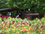 Foto und elektronische Grußkarte von der Britzer Parkbahn im Britzer Garten in Berlin<br />