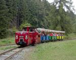 Foto und elektronische Gru�karte von der Ferienlandeisenbahn in Crispendorf im Wisentatal